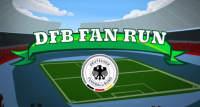 dfb-fan-run