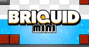 """Neues Physik-Puzzle """"Briquid Mini"""" spielt mit Wasser und Gravitation"""
