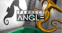 perfect-angle-3d-puzzle-fuer-ios