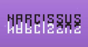 Narcissus: in diesem anspruchsvollen Plattformer steuert ihr zwei Figuren zeitgleich