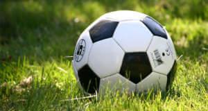 Diese Apps brauchen Fußballfans